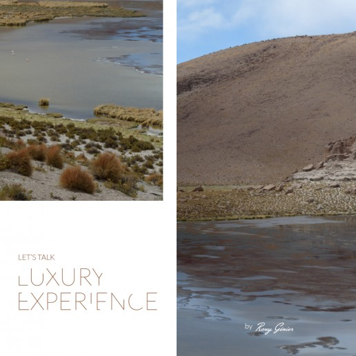 Roxy Genier - Let's Talk Luxury Experience - course