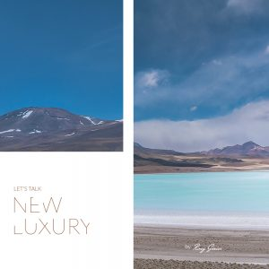 Roxy Genier - Let's Talk New Luxury - course
